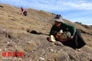 藏区贫困助学和物资项目捐助介绍